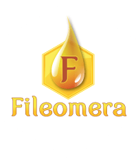 Fileomera logo